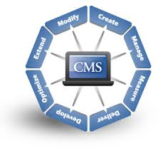 cms content manage system
